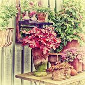 Blomsterhylla