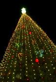 En stor julgran