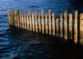 Trästaket i vatten