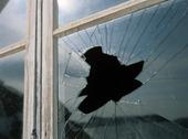 Sönderslagen fönsterruta