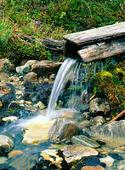 Källa med rent vatten