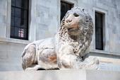 Knidos Lion staty på British Museum London, Storbritannien