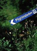 Pilgrimsleden, Dalsland