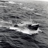 Fiskebåt i hårt väder