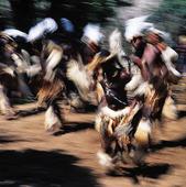 Dumazulustammen dansar, Sydafrika