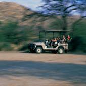 Safarijeep i Afrika