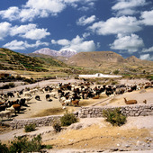 Landscape in Chile