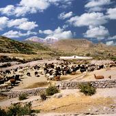 Landskap i Chile