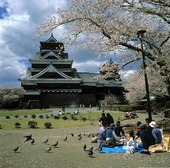 Picknick vid Kumamoto Castle, Japan