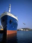 Dyk från fartyg