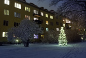 Julgran utanför bostadshus