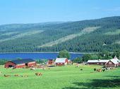 Bondgård i Jämtland