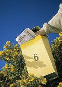 Tidning i postlåda