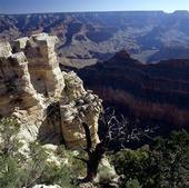 Grand Canyon i Arizona, USA