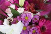 Blommor i bukett