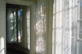 Gardin i fönster
