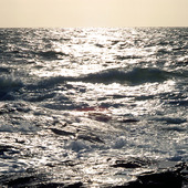Havskust