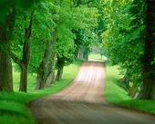 Grusväg i natur