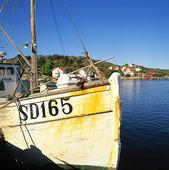Fiskebåt i Havstenssund, Bohuslän