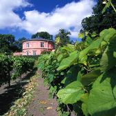 Rosendals trädgård, Stockholm