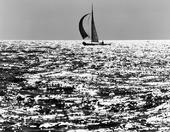 Segelbåt på havet