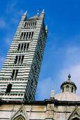 Katedralen i Siena, Italien