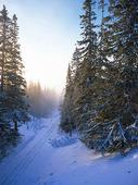 Åre bergbana, Jämtland