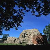 Ruin efter Slottet i Sölvesborg, Blekin