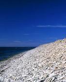 Stenstrand, Gotland