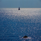 Segelbåt på glittrande hav
