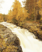 Fors, Finland