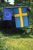 EU och Sverige