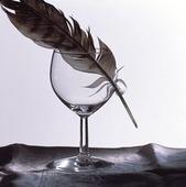 Fjäder i trasigt vinglas