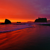 Ruby Beach i Olympic Nationalpark, USA