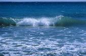 Vågor