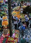 Marknad på Madeira, Portugal