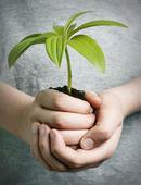 Barn med växt