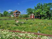 Landsbygd, Småland