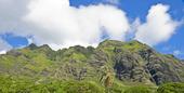 Gröna berg, Hawaii