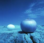 Ägget och äpplet