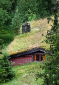 Gammal svensk stuga med gräs på taket