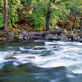 Merced River i Kalifornien, USA