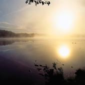 Soluppgång i morgondis