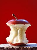 Äppleskrott