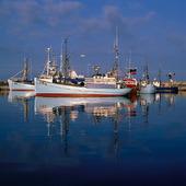 Danska fiskebåtar
