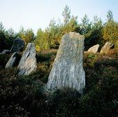 Domarring på Orust, Bohuslän
