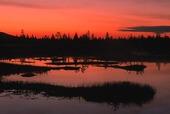 Skymning i Lappland