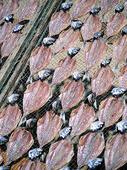 Fisk på tork, Portugal