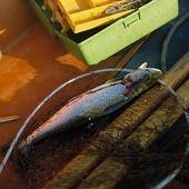 Fritidsfiske