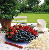 Bär på trädgårdsbord